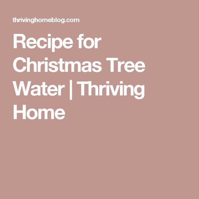Recipe for Christmas Tree Water | Thriving Home