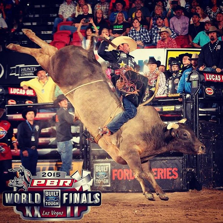 """""""Congrats to D&H Cattle Co on another amazing year of raising the bar in the bucking bull business! And to Long John for wining the 2015 World Bucking Bull…"""""""