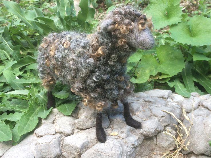 Needle Felted Sheep, by Saira Jan, FibreCraft.ca