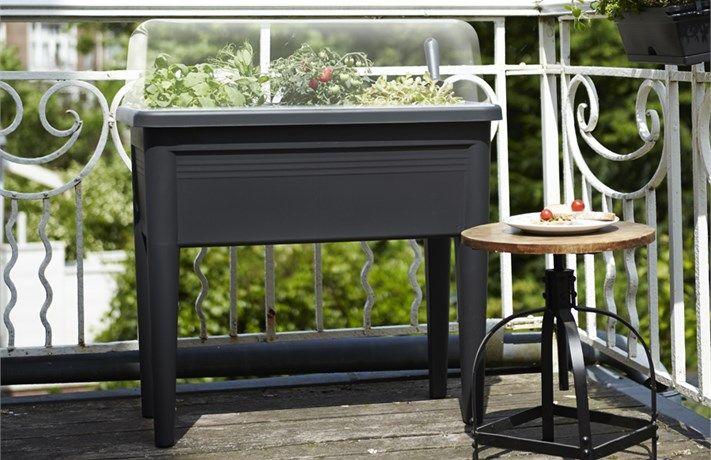 elho green basics grow table xxl - elho.nl