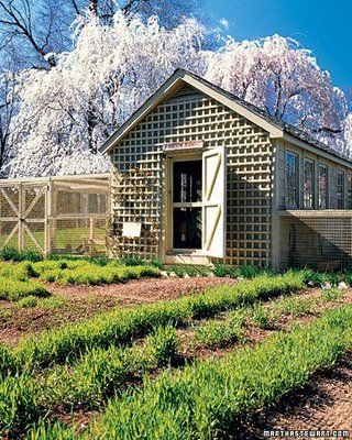 Martha Stewarts Chicken Coop: Lattices, Summer Kitchens, Stewart Chicken, Backyard Chicken Coops, Martha Stewart, Chicken Houses, Homesteads, First Houses, Hens Houses