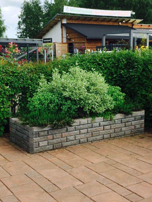 Vallikko-muuri ja Tosca-laatat http://www.rudus.fi/pihakivet