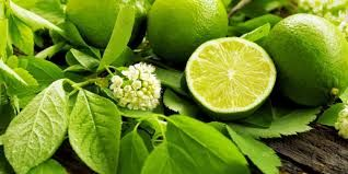 Foods of Nusantara: Lemon