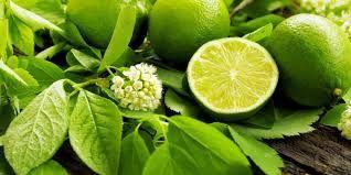 Foods of Nusantara: Lemon