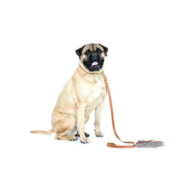Mary Jane's Classic Leash  Modelled by mastiff beauty, our designer leash with bohemian flare