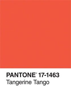 This eye-catching journal sports a cover showcasing the hotly anticipated 2012 PANTONE Color of the Year.