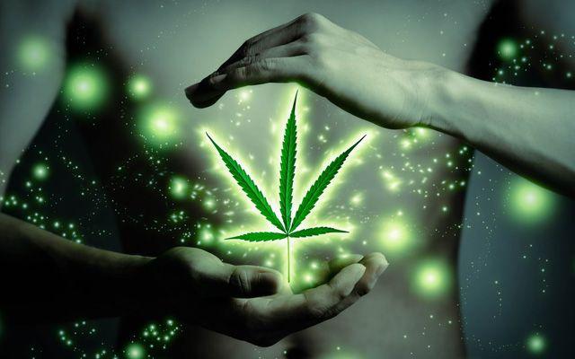 In einem fantastischen medizinischen Durchbruch zugunsten der Gesundheit hat die brasilianische Regierung ein Präparat der Medical Marijuana, Inc., aus Hanf-Cannabidiol (CBD) für die Behandlung von…