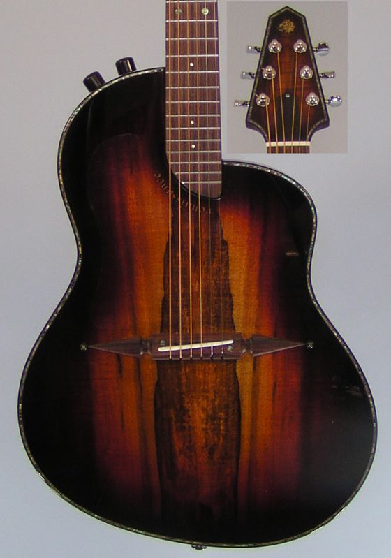 Very nice guitar by Rick Turner  http://www.renaissanceguitars.com/gallery.php?level=picture=3