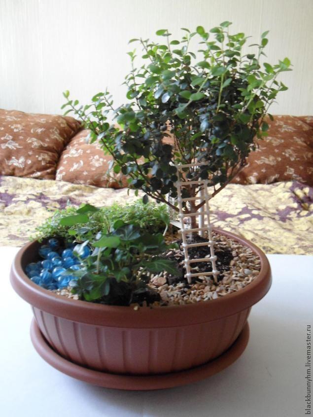 Всем здравствуйте! ) Это мой первый МК и я решила посвятить его одному из своих любимых увлечений - комнатным растениям. Растений у меня много и я люблю создавать из них композиции. Такие мини-садики радуют глаз, украшают дом и удивляют гостей). Итак, с чего же начинается создание мини-сада? Конечно же с идеи. То есть нужна концепция на основании которой создаётся композиция.