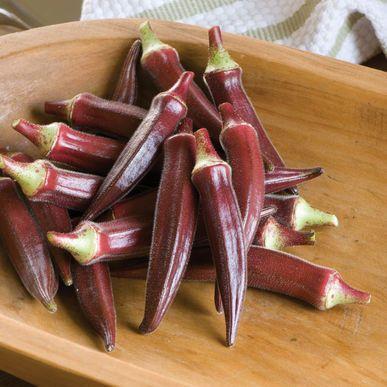 Carmine Splendor Okra Seeds (Abelmoschus esculentus) + FREE Bonus 6 Variety Seed Pack - a $30 Value!