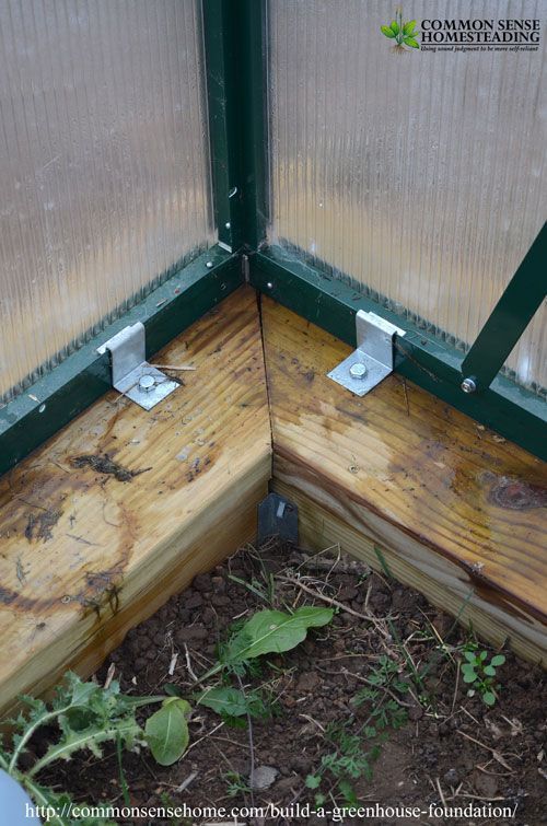Build a Secure Greenhouse Foundation That Preserves Your Growing Space #greenhousegardening #greenhousediy #Vegetablegardenbasics