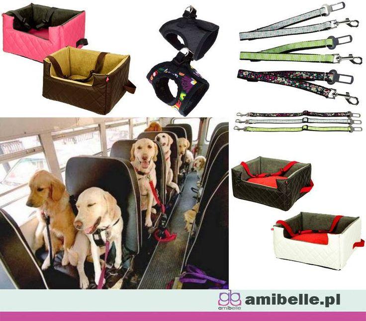 Podróż z Twoim pupilem powinna być bezpieczna, dla Ciebie i dla niego. Wszystko co potrzebne aby bezpiecznie i komfortowo podróżować z psem lub kotem znajdziecie na www.amibelle.pl  #psa #zapięciedopasa #dlapsa #dlakota #fotelikdosamochodu #szelki
