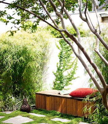 """Don't plant large trees. Instead, think about combining a few different plants with varied textural qualities, says Cantwell. """"Variety can create an illusion of space and interest, create depth and blur boundary lines.""""    Use plants with softer, strappier leaves, says Cantwell. """"They're nicer to look at and far friendlier than spiky leaves in confined spaces."""""""
