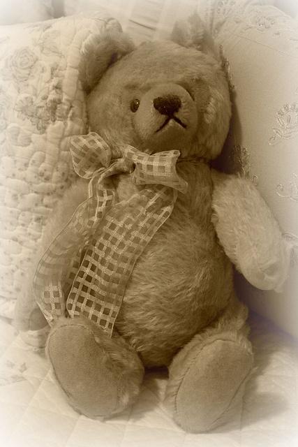 Vintage Steiff Teddy Bear by brendec7, via Flickr: