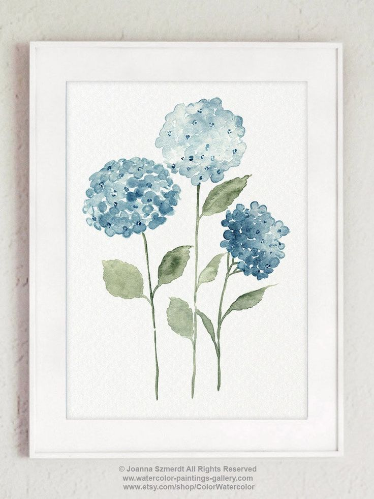 Blue Hydrangea Flowers Set 4 Watercolour Drawings, Colorful Botanical Motive Modern Bedroom Decoration, Scandinavian Nature Style Home Art Blue Hydrangea, Blue Flowers, Exotic Flowers, Yellow Roses, Pink Roses, Watercolour Drawings, Watercolor Paintings, Watercolor Leaves, Floral Watercolor