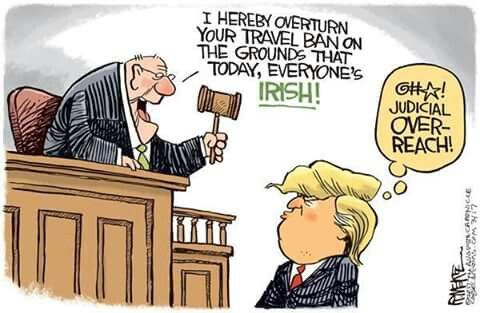 gray funny political cartoons
