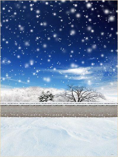 Kate Snow Scenery Blue Sky Snow Tree Backdrops