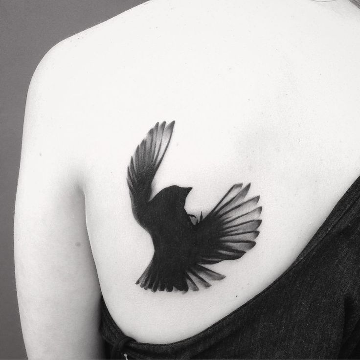 """Here's a tattoo I did a couple of years ago, a falling blackbird (not my design, but from an actual picture) I really like this one. Simplicity."""