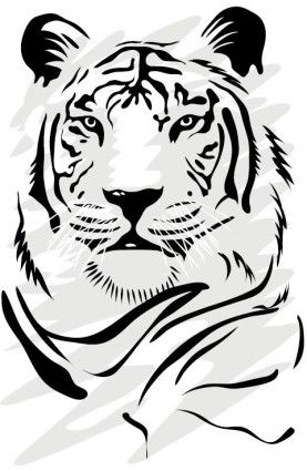 tiger image 06 vector