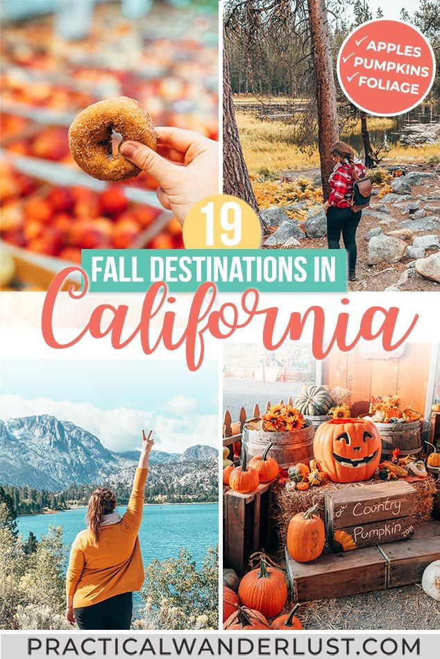 The Ultimate Fall In California Guide 21 Places To Go For Fall Foliage Pumpkins Apples More In 2020 Fall Travel Destination Fall Travel California Travel Guide