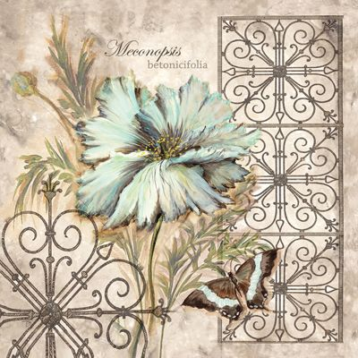 RB1878 <br> Blue Poppy Butterfly II <br> 12x12