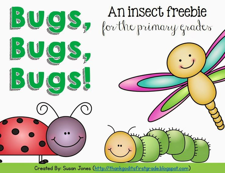 FREE insect mini-unit for the primary grades!
