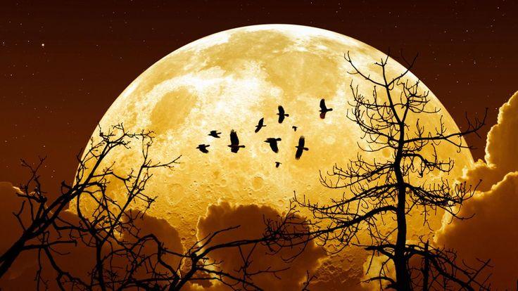 Super Lune rare : Si vous avez attendu le bon moment pour faire quelques vrais changements dans votre vie, alors tenez vous prêt, car le moment idéal