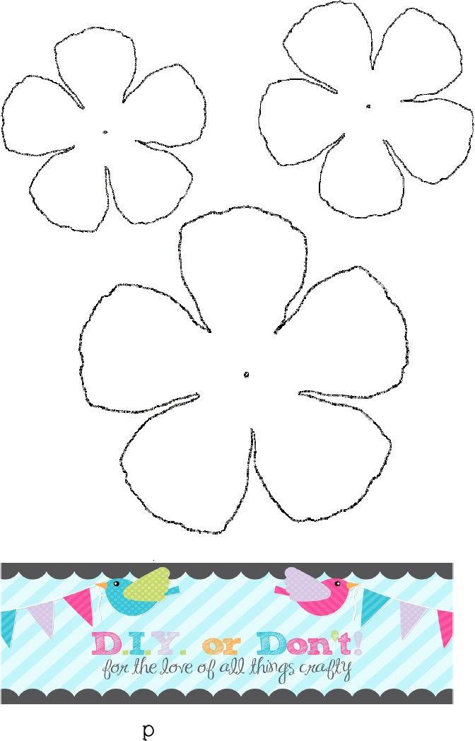 Ranunculus Flower | Scribd