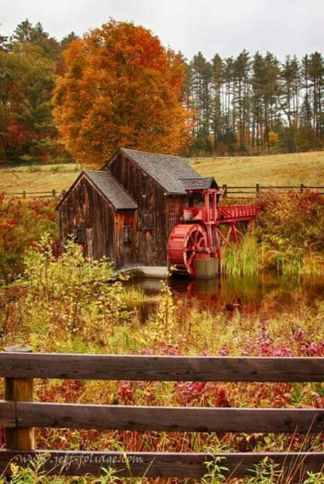 A beautiful fall scene