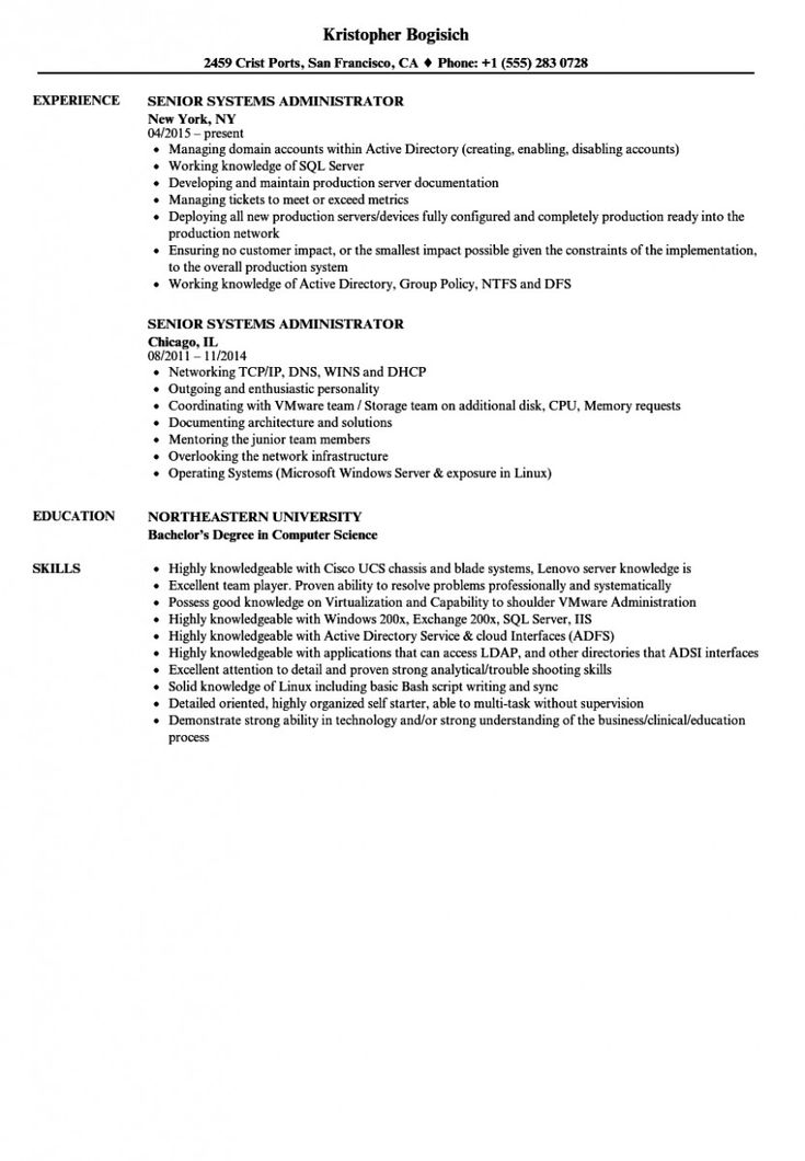 network administrator resume template