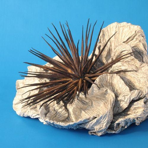 Origami Coral - Unique Paper art & sculpture - Plico Design