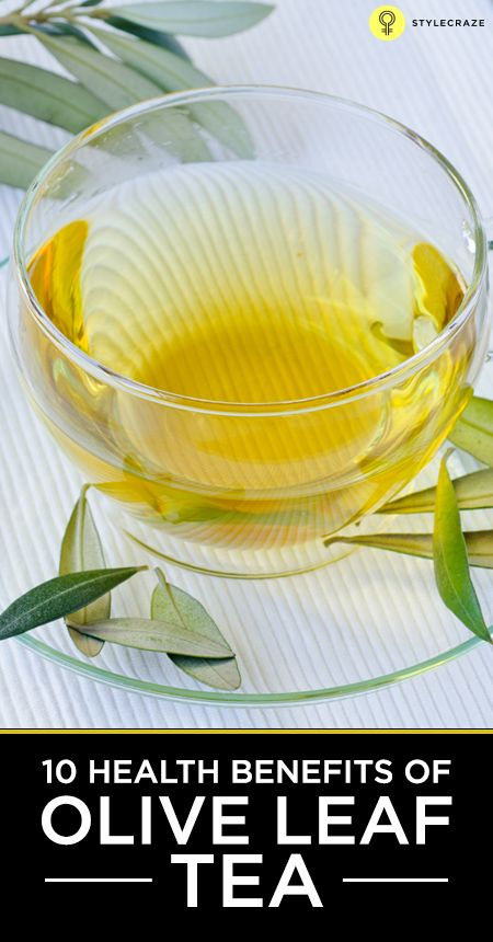 You may have heard about the numerous benefits of olive oil and experienced its use in numerous dishes. However, did you have any idea about Olive leaf tea? has numerous benefits when compared to regular tea.