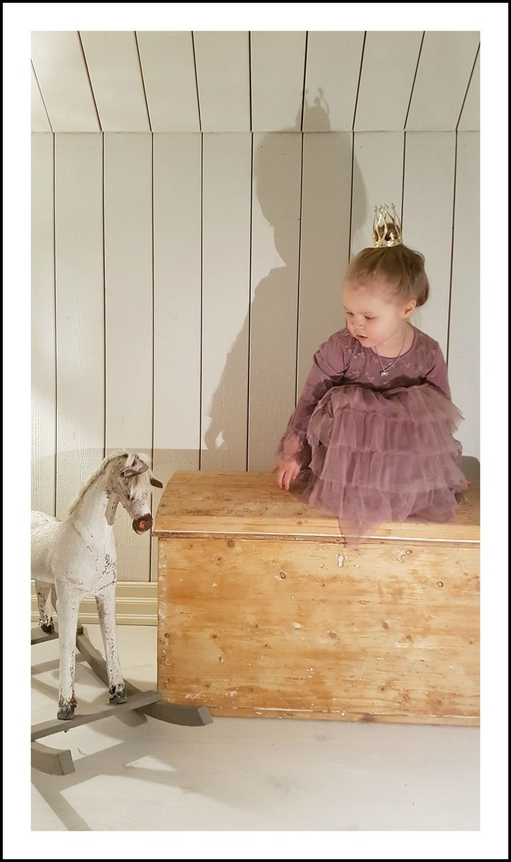 upstairs, princess and the horse
