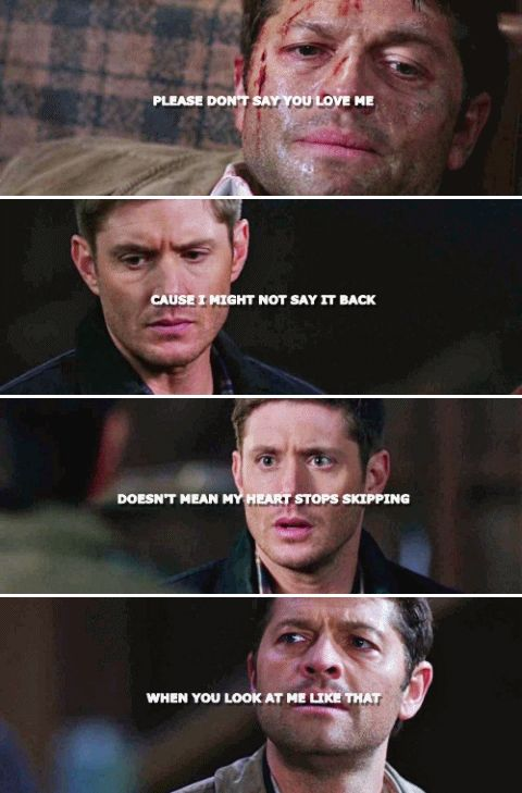 there's no need to worry when you see just where we're at, just please don't say you love me, 'cause i might not say it back. #spn #destiel