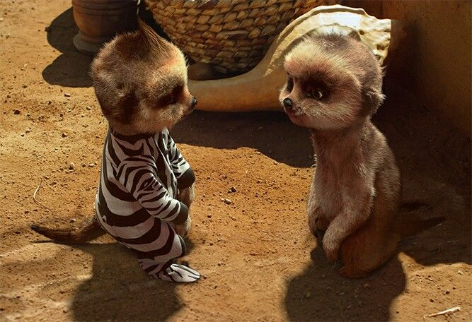 Baby Oleg's first day at nursery