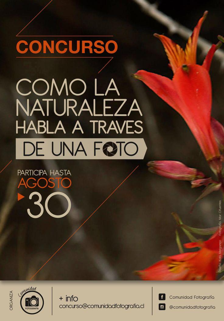 Afiche. Cliente: Comunidad Fotografía. Diseño Kata Melgarejo Bahamondes