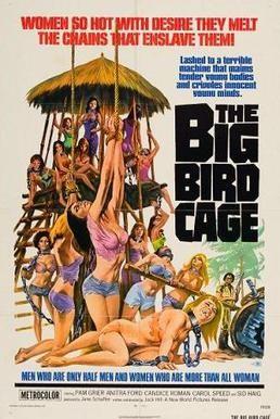 Big bird cage.jpg