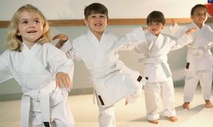 Groupon - Two Weeks or One Month of Taekwondo Classes, Including Uniform at Taekwondo University (Up to 75% Off) in Multiple Locations. Groupon deal price: $29