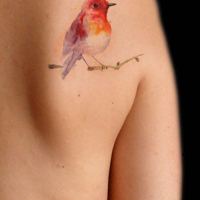 Gilberta Vita #gilbertavita #milan #painting #artist #pettirosso #tattoo #tatuaggio #tatuaggiopettirosso #uccelli #acquerello #tattoocolors #tattooacquerello #animal #bird #tattoobird #watercolor #purotattoostudio