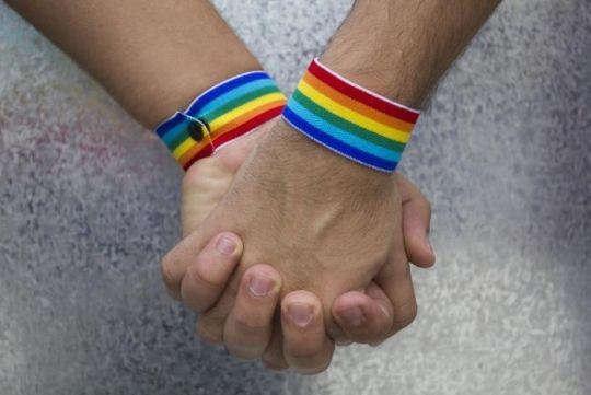 Recibe IMSS recomendación de la CNDH por negativa de pensión por viudez a parejas del mismo sexo | El Puntero