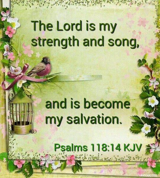 Psalms 118:14 KJV  The Lord is my strength and song, and is become my salvation.