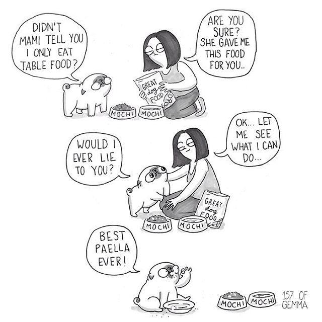 Mochi spend two days with my parents. I will be telling stories about his experience throughout this week. And yes, he literally got them to give him paella (typical spanish food) in a human's plate! #mochiawayfrommami .............................. M: Mami no te ha comentado que yo sólo como comida de persona? GM: estás seguro? Ella me ha dado ésta comida para ti. M: A caso yo te mentiría?? GM: Vale...voy a ver que puedo hacer... M: la mejor paella del mundo!! Mochi pasó un par de días en…