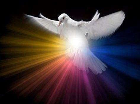 Spirito Santo, dono di Dio all'anima mia, io rimango attonito per l'emozione e l'ammirazione, pensando a Te. Non trovo nulla che possa dire la felicità int