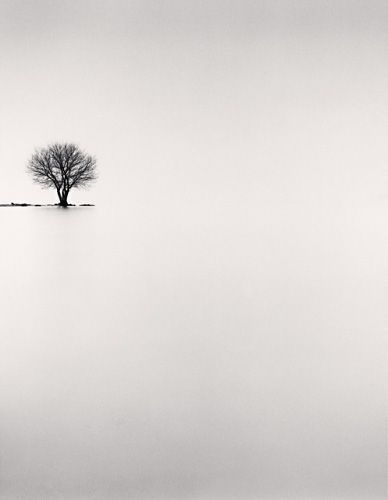Another simply gorgeous picture. ♥    Credit to Michael Kenna  Biwa Lake Tree, Study 2, Omi, Honshu, Japan, 2002
