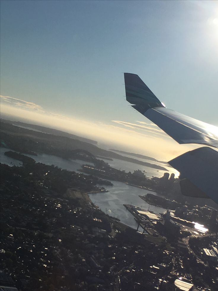Sydney Harbour from a plane