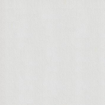 Superfresco Easy Paintable vliesbehang 33-162 speckel wit 10 meter in de beste prijs-/kwaliteitsverhouding, volop keuze bij GAMMA