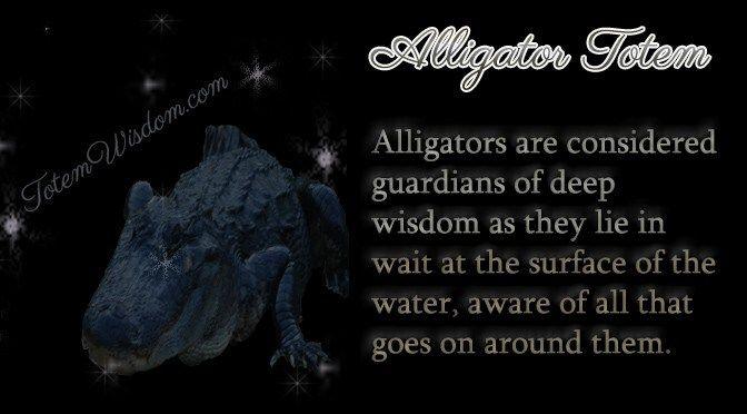 alligator totem