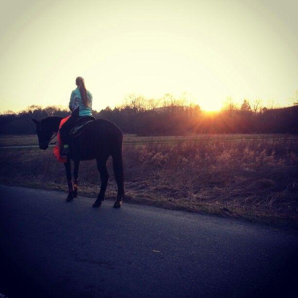 Najkrajší pocit je sedieť na konskom chrbte :)