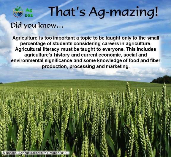 A few more facts about the plant systems we use in the agricultural industry.