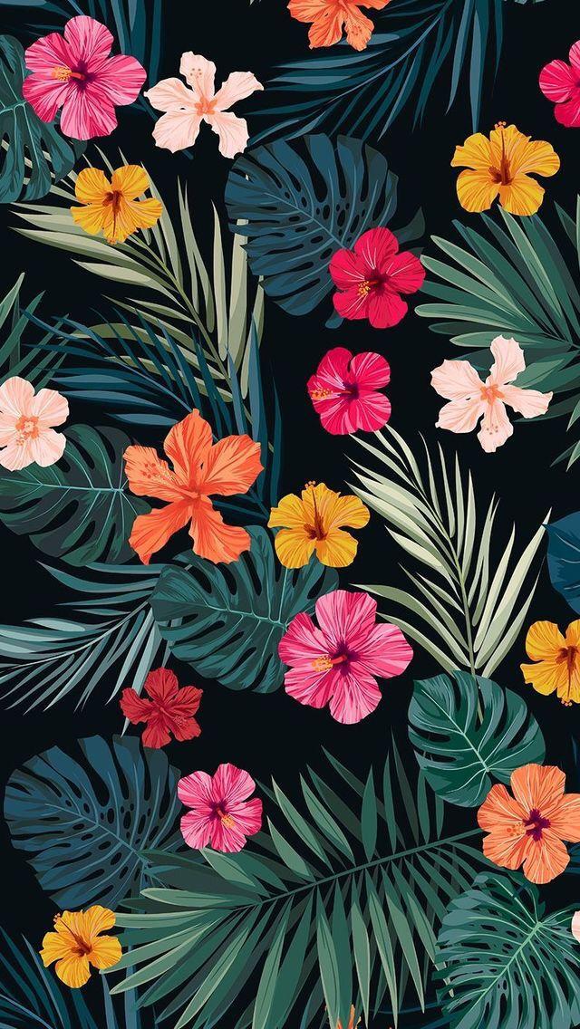 Aesthetic Flower Wallpaper For Iphone Tumblr Colours Love Flowers Background Nature Flower Iphone Wallpaper Flower Wallpaper Floral Wallpaper